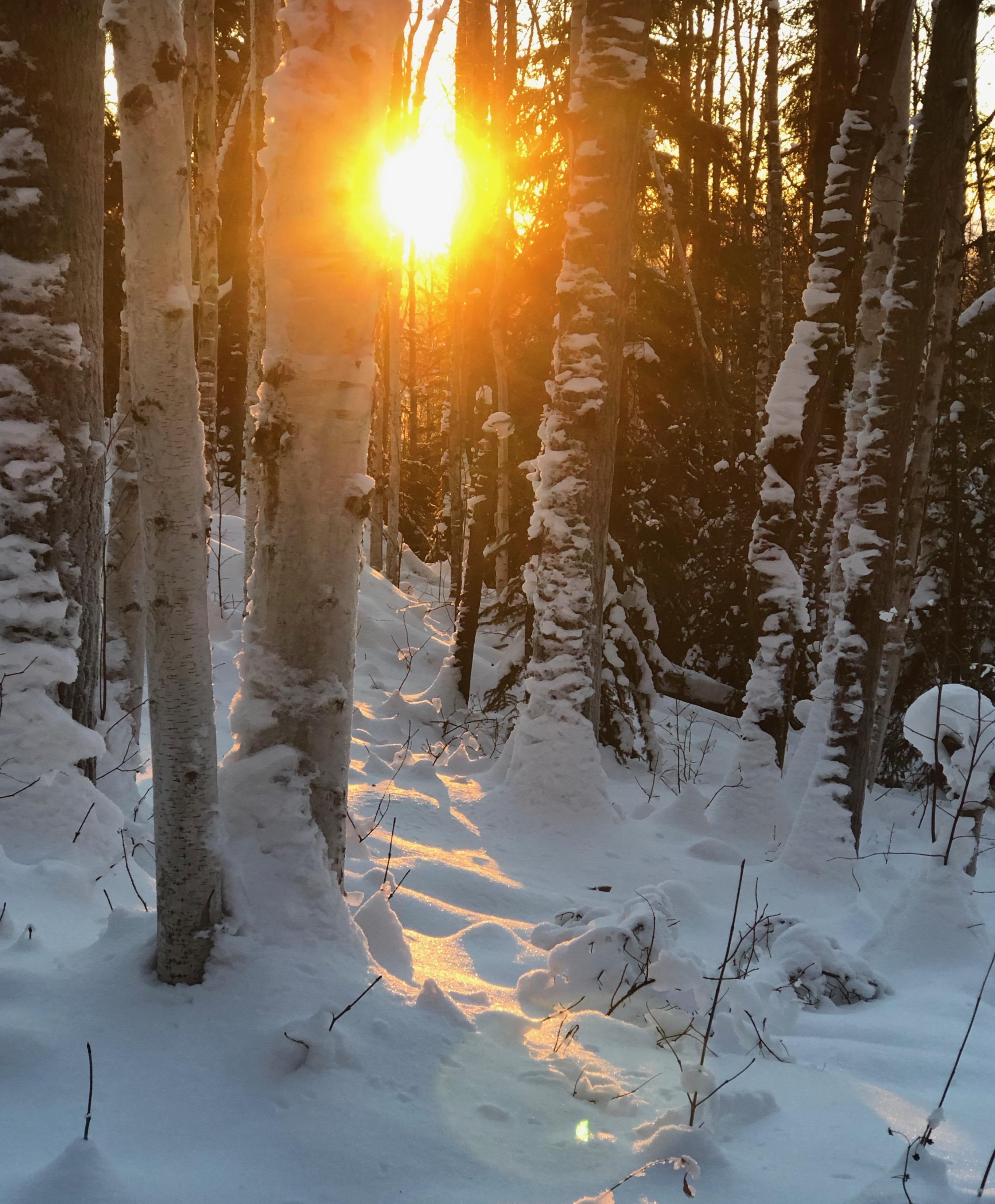 WinterSolstice3
